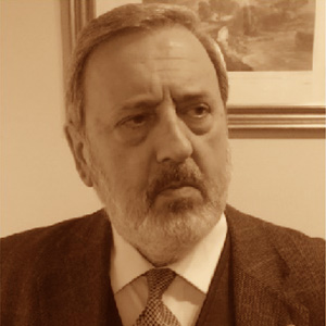 D. Álvaro Fernández Álvarez